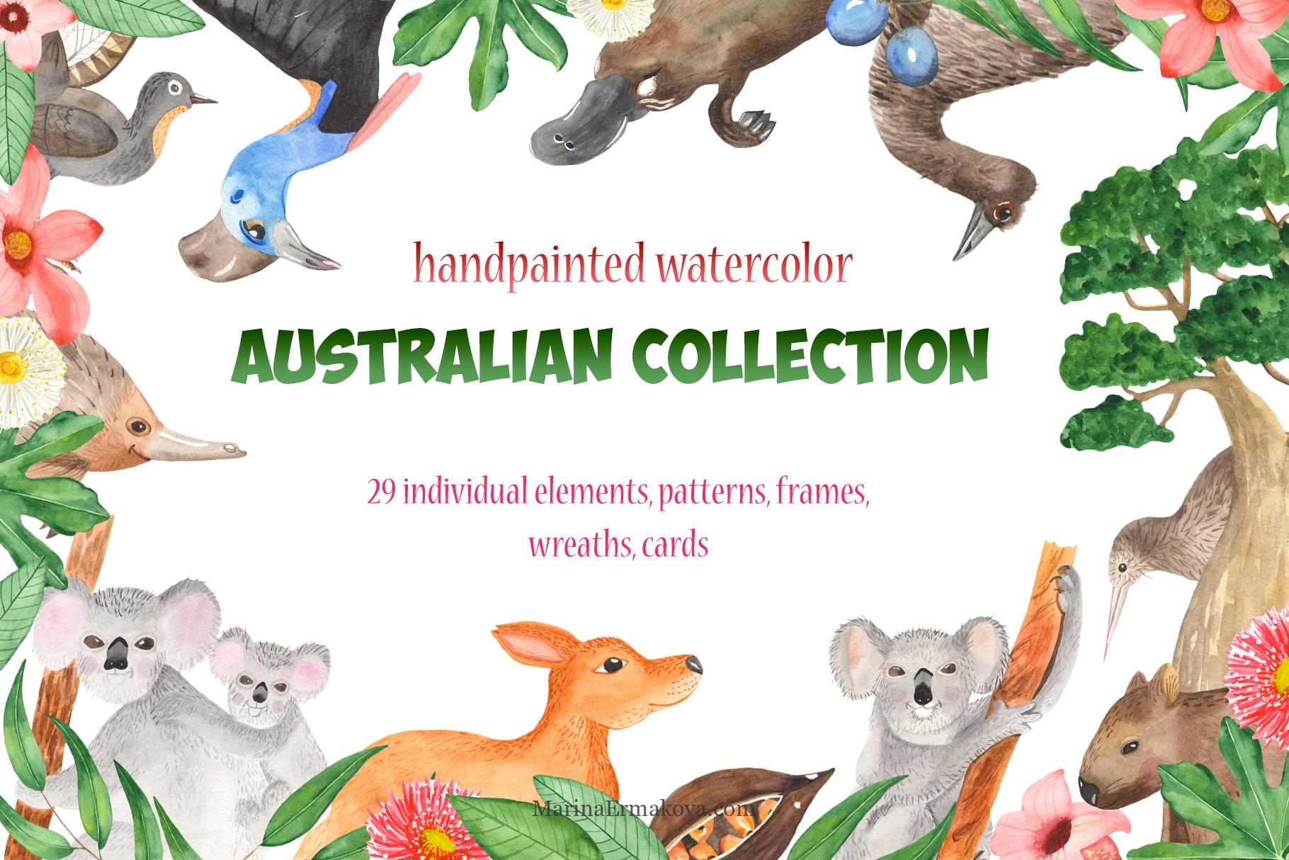 Australian animals and plants watercolor clipart